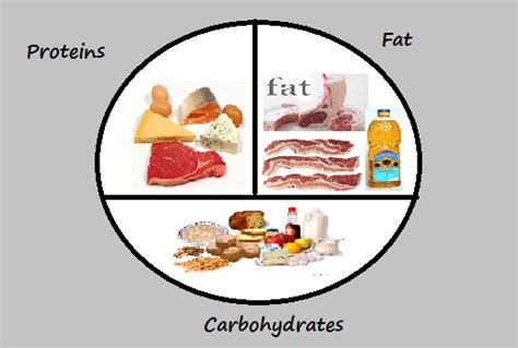 calories or carbohydrates new exles of carbohydrates in exle