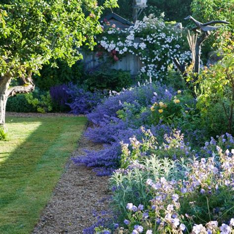 Garden Border Planting Ideas Garden Border Ideas Photos Home And Garden Design