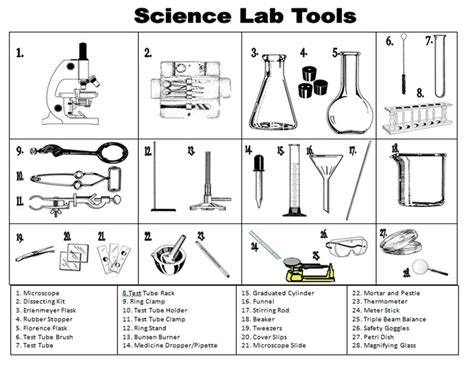 laboratory equipment worksheet science tools foldable on science tools science process skills and science safety