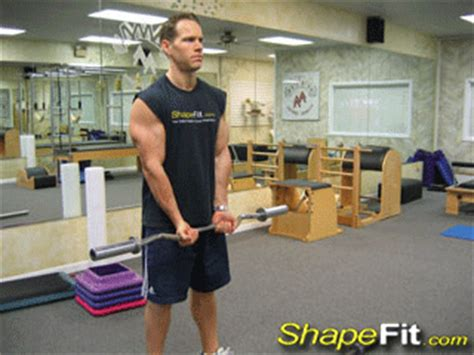 ez bar curls biceps exercise guide with photos