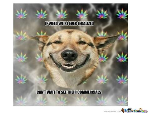 high dogs high by dafuqdidijustread meme center