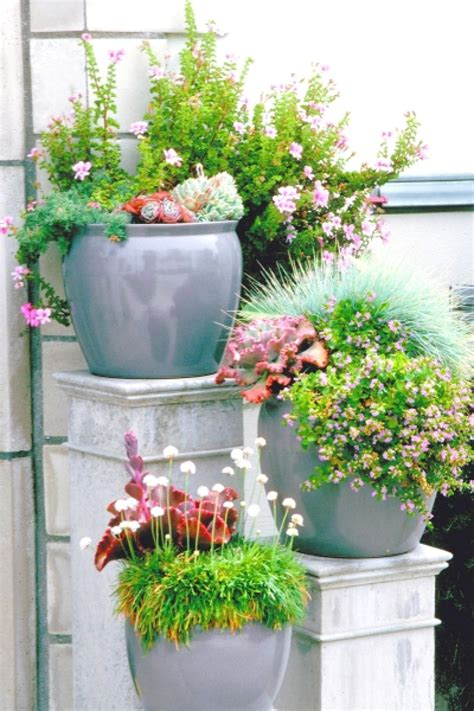 multiple planted pots hgtv