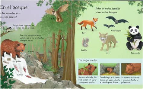 los animales mi primer mi primer libro de animales ed usborne