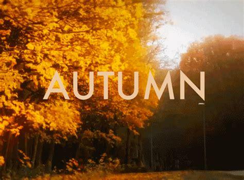 imagenes de welcome november fall gif on tumblr
