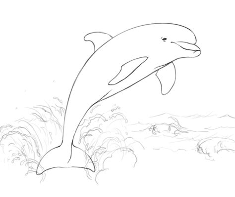 coloring pages dolphins jumping dolphin jumping from water coloring page free printable