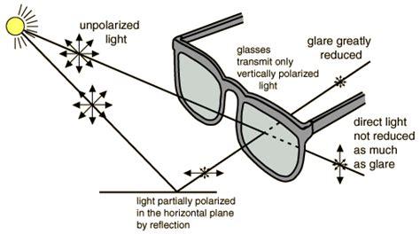 glasses diagram polarized sunglasses guide select polarized oakley revo