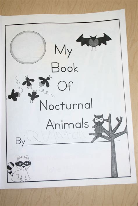 printable pictures nocturnal animals image gallery nocturnal animals activities