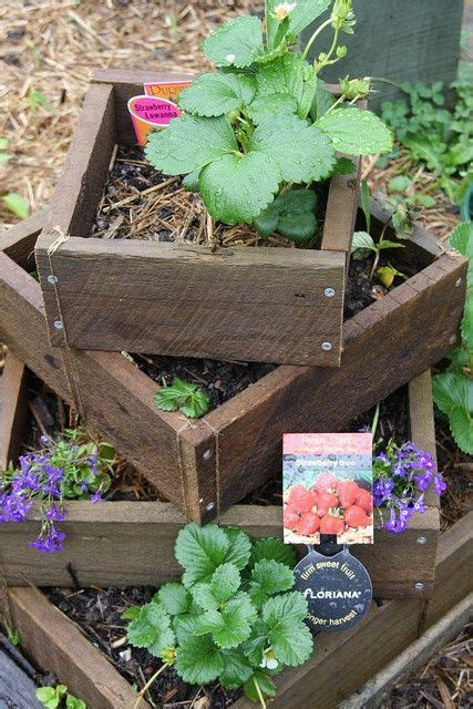 Strawberry Planter Boxes by Strawberry Planter Box Garden Stuff How To