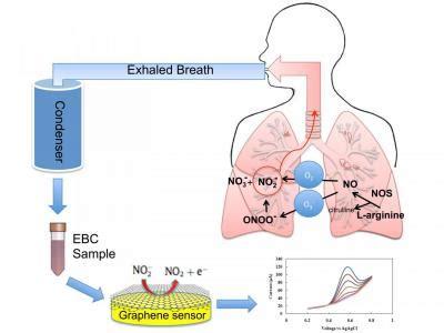 graphene capacitor sensor graphene based sensor may improve the diagnosis and treatment of asthma graphene info