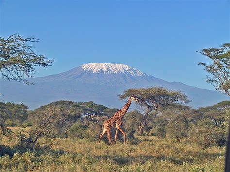 imagenes i love kenia fotosammlung