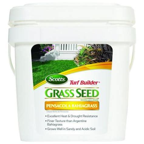 scotts turf builder 5 lb pensacola bahia grass seed 18274