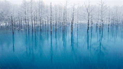 most beautiful colors slideshow japan s blue pond photographer captures a