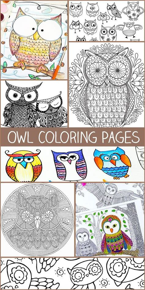 unicorn coloring book an coloring book with relaxing and beautiful coloring pages unicorn gifts for books owl coloring pages owl coloring and owl patterns