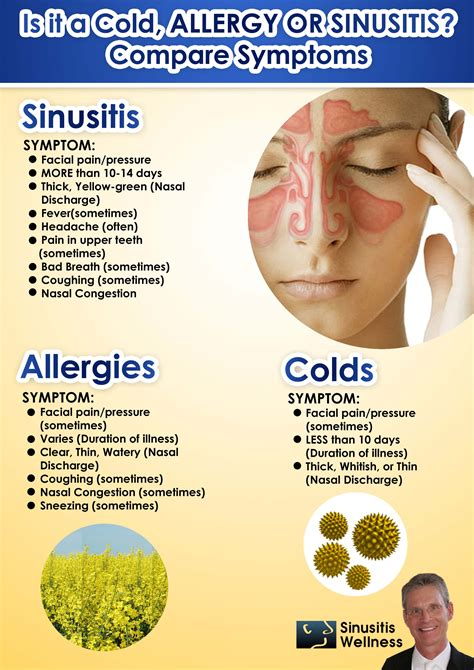 has allergies do i a cold allergies or sinusitis