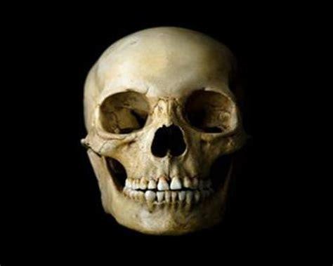 imágenes de una calavera esperando rostro de calavera tutorial photoshop arte taringa