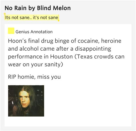 Blind Melon No Meaning its not sane it s not sane no by blind melon