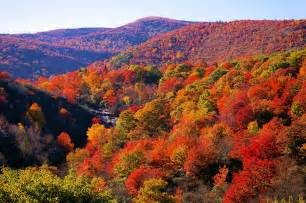 what are fall colors fall color asheville nc mountain travel tips