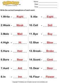 write homophone of each word worksheet turtle diary