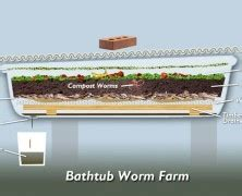 bathtub worm farm 25 best ideas about compost maker on pinterest compost