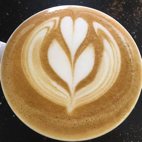 coolamon cheese   campos coffee rep discovers