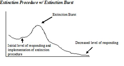 potential effects of an extinction procedure behavioral