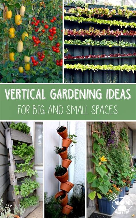 best 25 small space gardening ideas on small