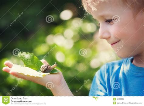 cute boy royalty free stock photography image 26641147 boy and snail stock photo image of exploration