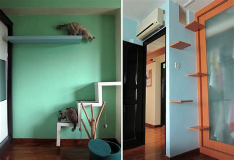 cat friendly home design singapore flat has cats living in style hauspanther
