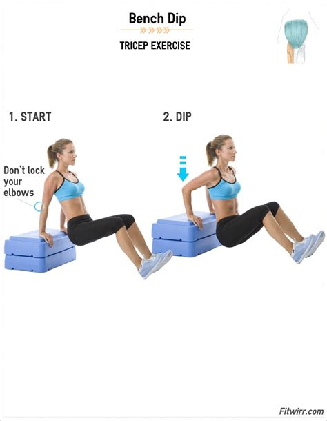triceps bench dip tricep dips dips bench and tricep dips