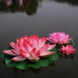 Lotus Flower On Water 60 Cm Diameter Large Artificial Lotus Flower Pool Floating