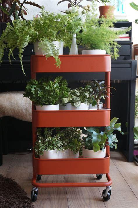 ikea cart   plants indoorgarden