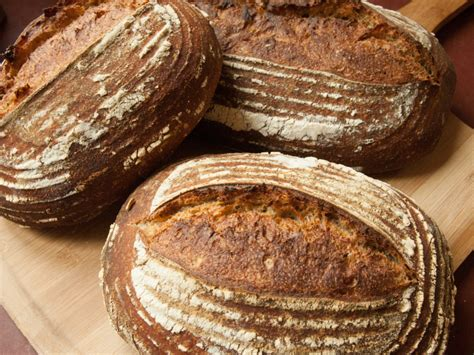 Aishaderm Moist Day 20 Gr mixed flour levain with autolyse take 2 and 3