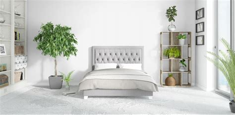 piante da letto piante in da letto le variet 224 da scegliere diredonna