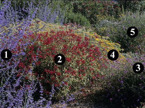 Plante Pour Jardin Sec by Des Id 233 Es De Plantes Pour Un Jardin Sec D 233 Coration