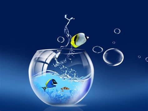Fischglas Desktop Hintergrundbild   1024x768   Kostenlose