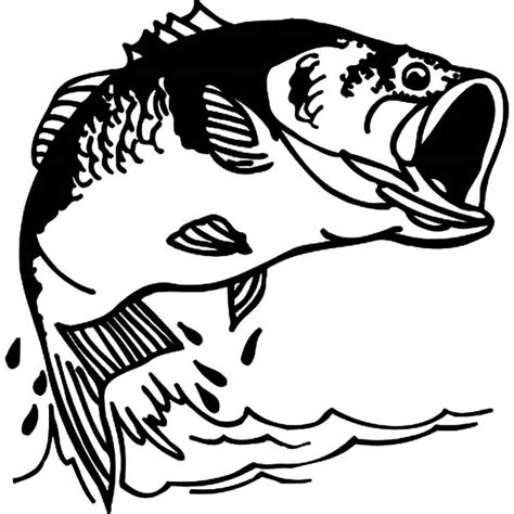bass fish coloring pages free bass free colouring pages