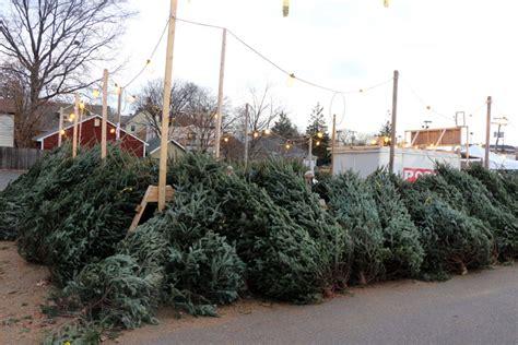 the optimist club s christmas tree sale at 2213 n glebe
