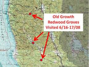 redwood forest california map the world up visit to an planet