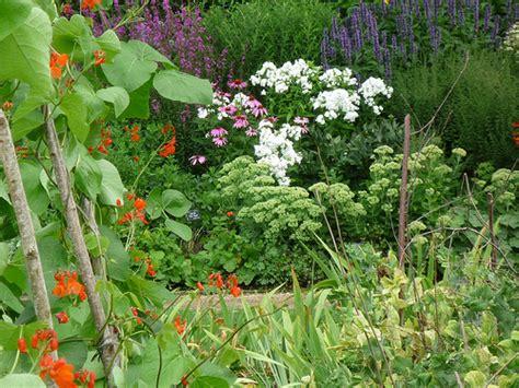 ornamental vegetable garden ornamental vegetable garden images