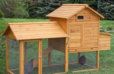 chicken coop small yard 12 backyard chicken coop with