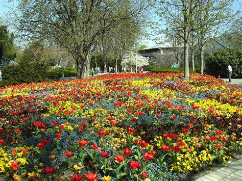 Britzer Garten Tulpen 2018 by Landschaftsgarten