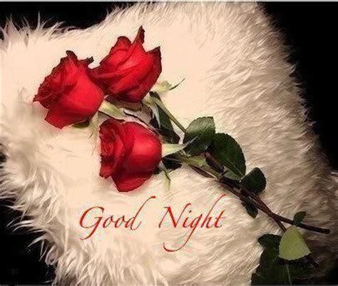 imagenes chistosas de good night good night frases para mi amor resultados de la b 250 squeda