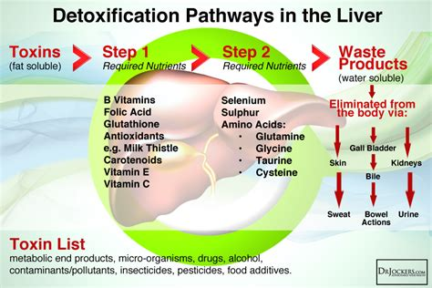 Took Liver Detox Pill And Back Started To Itch by Sulfur A Critical Nutrient For Optimal Health
