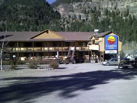 comfort inn ouray co the comfort inn picture of comfort inn ouray tripadvisor