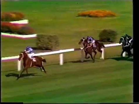 golden slipper c reviews luskin winning the 1977 golden slipper stakes