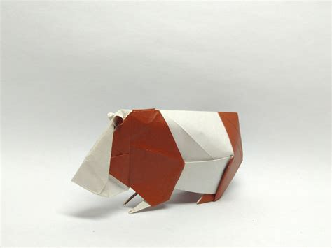 Origami Guinea Pig - the world s best photos of origami and pig flickr hive mind