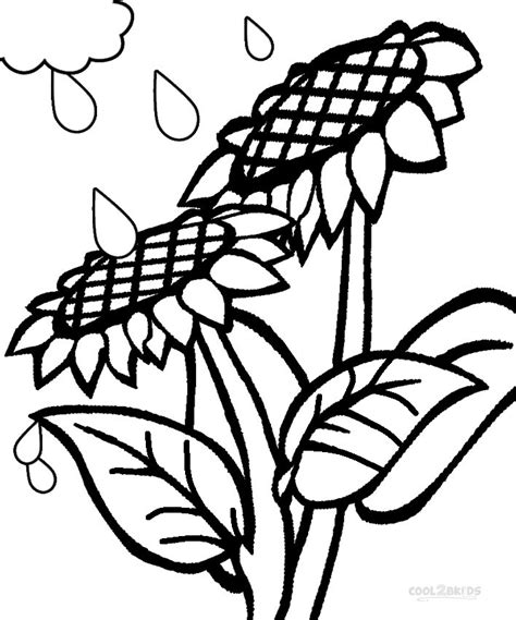 sunny daisy petal coloring page coloring pages