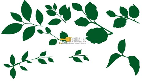 leaf pattern brush sted leaves brushes fbrushes