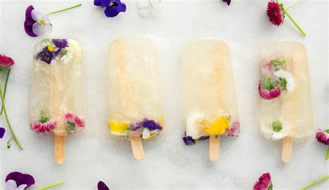 10 diy edible flower food recipes for summer shelterness chagne popsicles recipe with edible flowers st germain