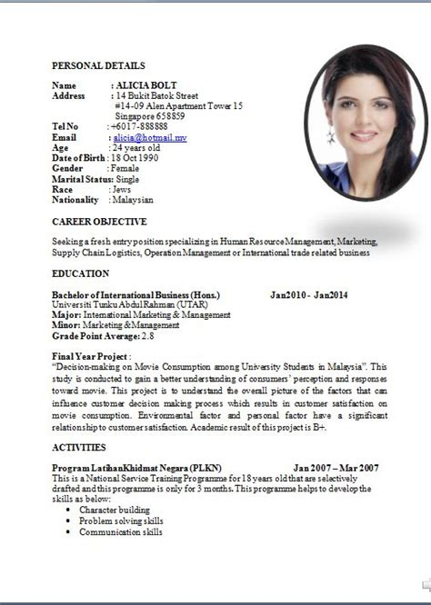 Resume Template Professional Doc sle curriculum vitae for application how to write a